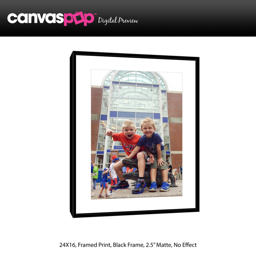 Canvas Pop Preview